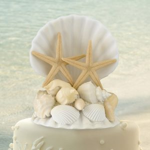 Cake Topper Différent Thème