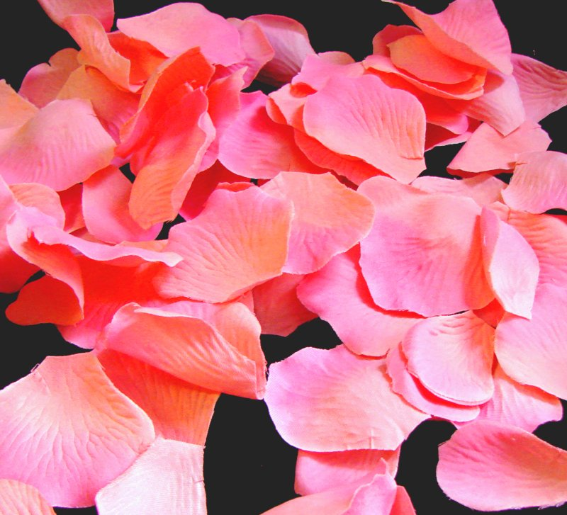 crystal corail roses Mariage /& Prom poignet fleurs corsage boutonnière rose